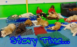 Playroom Story Time